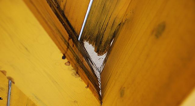 木材の防蟻と防腐