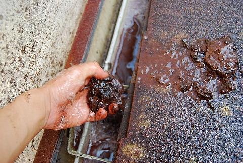 雨樋のつまりを除去!