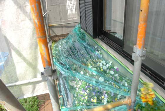 洗浄前の花壇を養生。