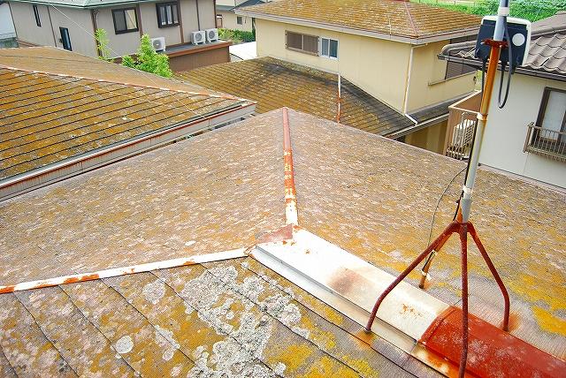 屋根塗装におけるお見積もり状態